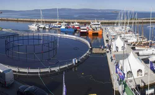The aquaculture industry has seen a significant progress in the course of these years, and the fields of technology, processes and services related to the farming of salmon, other marine species,