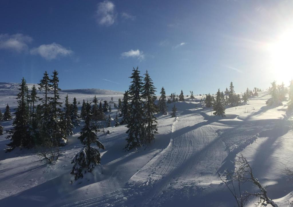 høyde over havet trysil
