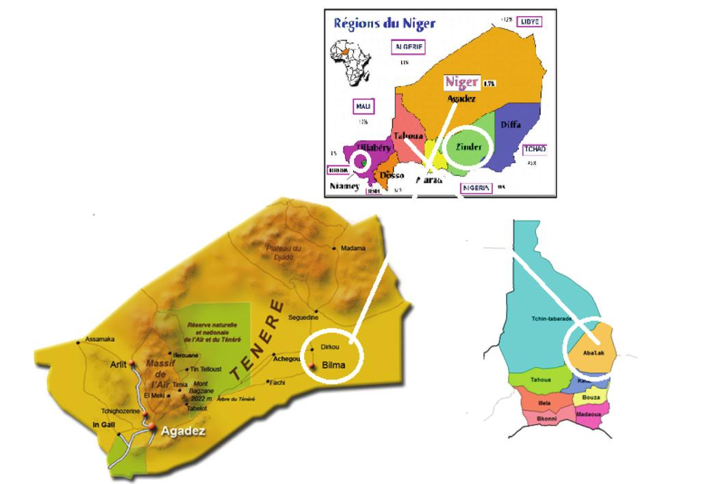 Applied Chemistry 3 Figure 1: Map of Niger and the sampling different localities. Table 2: ph and percentage of insoluble and some ions in the samples studied.