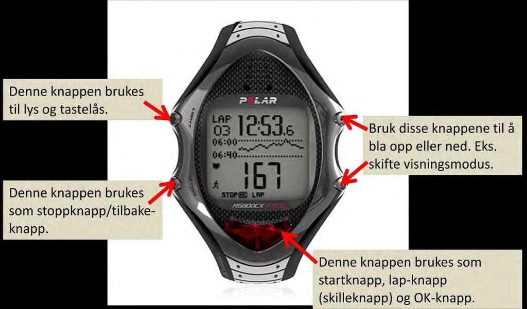 Heart Rate Variability as a Measure of Exercise- and
